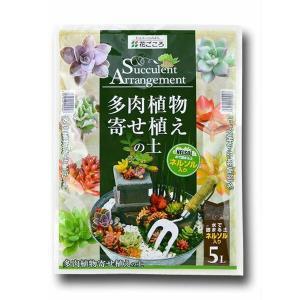 花ごころ 園芸用用土 多肉植物寄せ植えの土 5L(ネルソル入り)|e-hanas