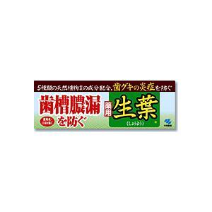 生葉/しょうよう 薬用ハミガキ 100g 小林製薬|e-hiso