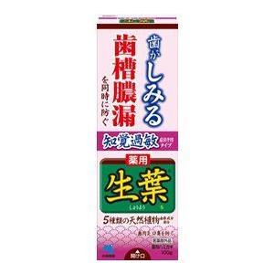 生葉(しょうよう)知覚過敏症状予防タイプ 100g 薬用ハミガキ 小林製薬|e-hiso
