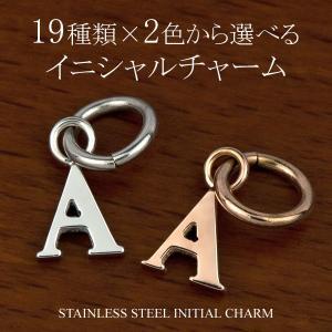 イニシャル チャーム サージカル ステンレス スチール (316L) オリジナル ペア ネックレス にできる アルファベット アクセサリー|e-housekiya