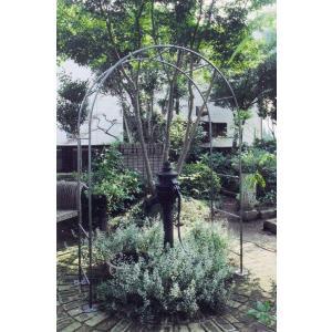 ガーデンアーチ ローズアーチ アイアン ロートアイアン ドーム アーチメイン 幅1600×高2400×奥行600 組立式 DIY 接続可能 送料無料|e-housemania