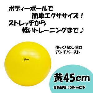 ボディーボール45 黄 H-7260 トーエイライト ストレッチ エクササイズ 運動  座るだけの簡...