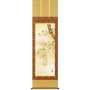 掛け軸 桜花 緒方葉水作 掛軸 モダン インテリア|e-kakejiku