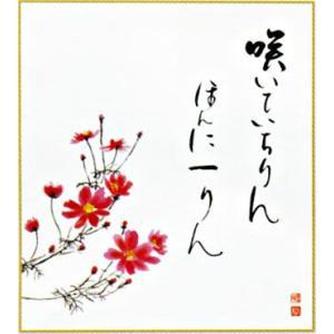 色紙 「秋桜」 (日本の伝統美)|e-kakejiku