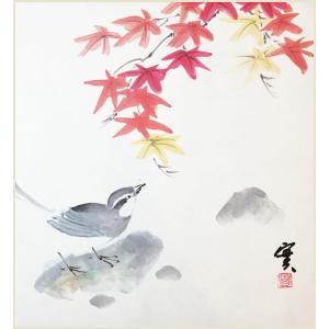 色紙 四季花鳥 秋 紅葉に鶺鴒 安藤實|e-kakejiku