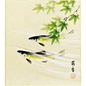色紙 「鮎」島田萌香作|e-kakejiku