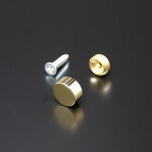 化粧キャップセット(真鍮製) フラットタイプ EPC-D16F ゴールド|e-kanamono