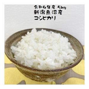 米 5kg 魚沼産コシヒカリ お米 新潟 魚沼 30年産|e-koshihikari
