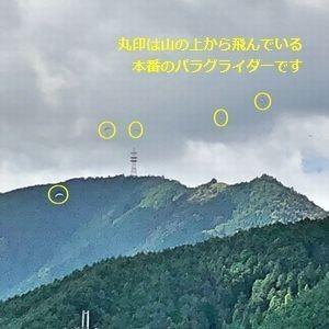 米 5kg 夢ごこち お米 兵庫県産 30年産|e-koshihikari|09