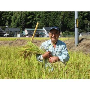 米 5kg ミルキークイーン 米 兵庫県産 30年産 e-koshihikari 05