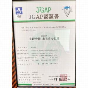 玄米 10kg ミルキークイーン(5kg×2袋) 兵庫県産 29年産|e-koshihikari|07
