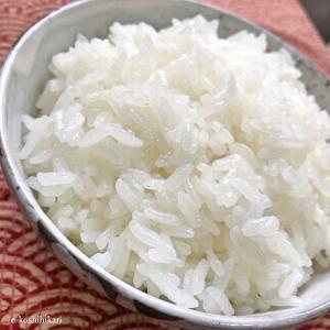 贈答米 龍の瞳(りゅうのひとみ)お米 いのちの壱 岐阜県産 3kg ギフト e-koshihikari 02