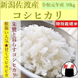 新米 こしひかり 新潟県佐渡産 10kg...