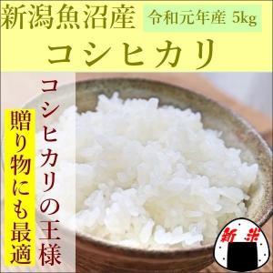 新米 こしひかり 新潟県魚沼産 5kg