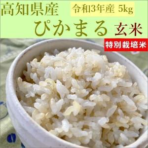 玄米 5kg ぴかまる 高知県産 30年産|e-koshihikari