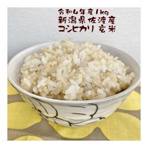 玄米 1kg 新潟産こしひかり 新潟県産 30年産 e-koshihikari