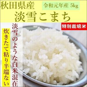 特別栽培米 淡雪こまち お米 5kg|e-koshihikari