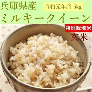 特別栽培米 玄米 ミルキークイーン 5kg 30年産|e-koshihikari