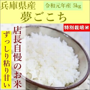 特別栽培米 夢ごこち 5kg|e-koshihikari