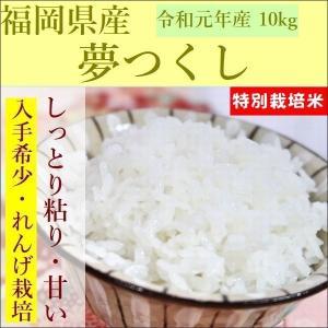 特別栽培米 夢つくし 10kg|e-koshihikari