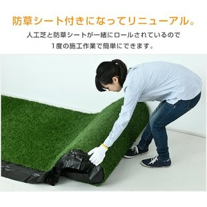 人工芝 芝生 ロール 1m×10m 芝生マット...の詳細画像2