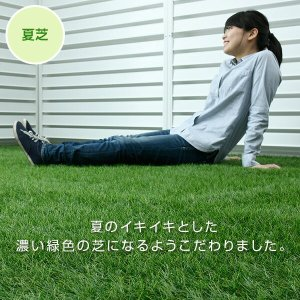 人工芝 芝生 ロール 1m×10m 芝生マットの詳細画像5