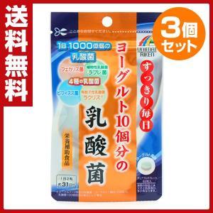 ヨーグルト10個分の乳酸菌 62粒×3袋 サプリ サプリメント 健康食品 美容 健康 栄養補助食品 乳酸菌 ヨーグルト フェカリス菌 ビフィズス菌 ラブレ菌|e-kurashi