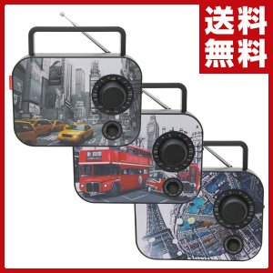 AM/FM ラジオ (AC電源/乾電池) AR-30 AM FM ラジオ 外部出力 AC電源 乾電池 ポータブルラジオ インテリアラジオ おしゃれ|e-kurashi
