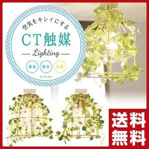 ボタニック シーリングライト 1灯 CC-40356 ペンダントライト 照明 天井照明 ライト おしゃれ【あすつく】|e-kurashi