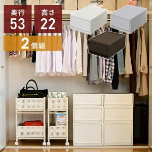 中が透けない クローゼット 収納ボックス 高さ22cm 2個セット アイボリーグレー(IVIV) 収納ケース 引き出し 【日本製】 幅39×奥行53【あすつく】|e-kurashi