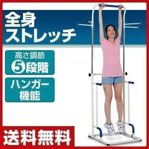 ぶらさがり健康器プラスワン SE1209【あすつく】