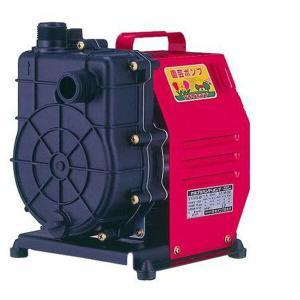 小型 給水ポンプ ハンディーポンプ HP-200 100V 口径25mm 農業用ポンプ 循環ポンプ 電動ポンプ 家庭用 散水機 池 水換え【あすつく】|e-kurashi