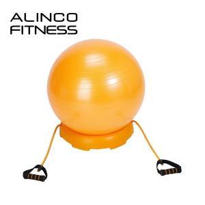 エクササイズボール 55cm セット(ボール、固定台、チューブセット)エアポンプ付 EXG124DX...