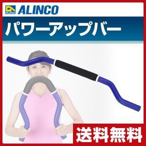 パワーアップバー EXG053 胸筋 上半身 二の腕 引き締め|e-kurashi