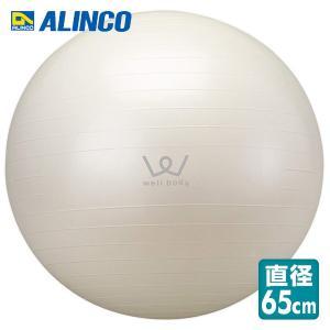 エクササイズボール(65cm)EXG025|e-kurashi