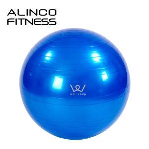 エクササイズボール(65cm) エアポンプ付  EXG025...