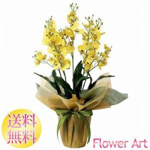 母の日 光触媒アートフラワー オンシジュームS 黄色の蘭 お祝い|e-living