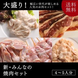 送料無料 焼肉 バーベキュー新・みんなの焼肉セット...