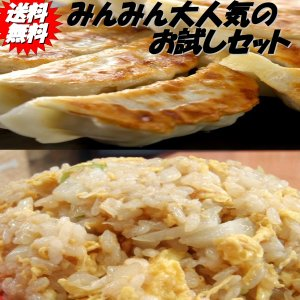 餃子40個 チャーハン3パック ぎょうざ ギョーザ ギョウザ...