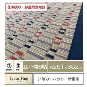 い草カーペット 新掛川 江戸間6帖 261x352cm|e-minerva
