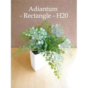 アジアンタム 長方形 20cm 造花 CT触媒 造花 観葉植物 ミニ インテリア e-mintcafe