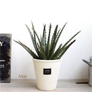 アロエ 23cm 多肉植物 造花 インテリア CT触媒 観葉植物 フェイクグリーン e-mintcafe