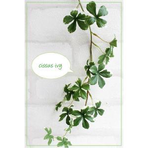 S.ミニシサスアイビーバイン (シュガーパイン)ヴァリケイドグリーン41132 造花 光触媒 CT触媒 フェイクグリーン 観葉植物 インテリア|e-mintcafe