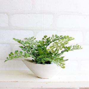アジアンタム 小舟型 12cm 造花 観葉植物 インテリア CT触媒 ミニ 造花 e-mintcafe