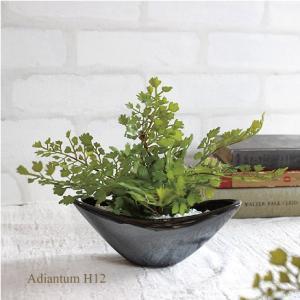 柔らかな印象のアジアンタム 落ち着いた銀黒の花器は和にも洋にも♪ コンパクトサイズでどこでも素敵に飾...