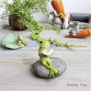 リーディングフロッグ カエル かえる 雑貨 ガーデン雑貨 インテリア|e-mintcafe