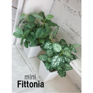 観葉植物 ミニフィットニア 18cm 造花 フェイクグリーン 光触媒 CT触媒 e-mintcafe