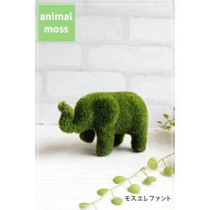 モスエレファント Elephant 雑貨 インテリア ガーデン雑貨 置物 アニマル 0078|e-mintcafe