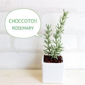 ミニ ローズマリーポット 造花 観葉植物 光触媒 CT触媒 インテリア フェイクグリーン|e-mintcafe
