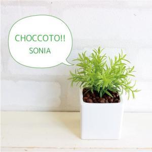 ミニ ソニアポット 造花 観葉植物 光触媒 CT触媒 インテリア フェイクグリーン|e-mintcafe